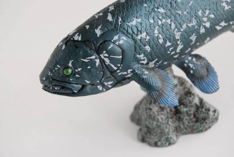 大人の恐竜模型館 Favorite シーラカンス レビュー
