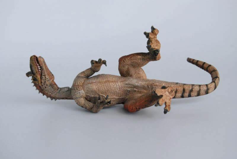 大人の恐竜模型館 Papo クリオロフォサウルス 恐竜フィギュア レビュー