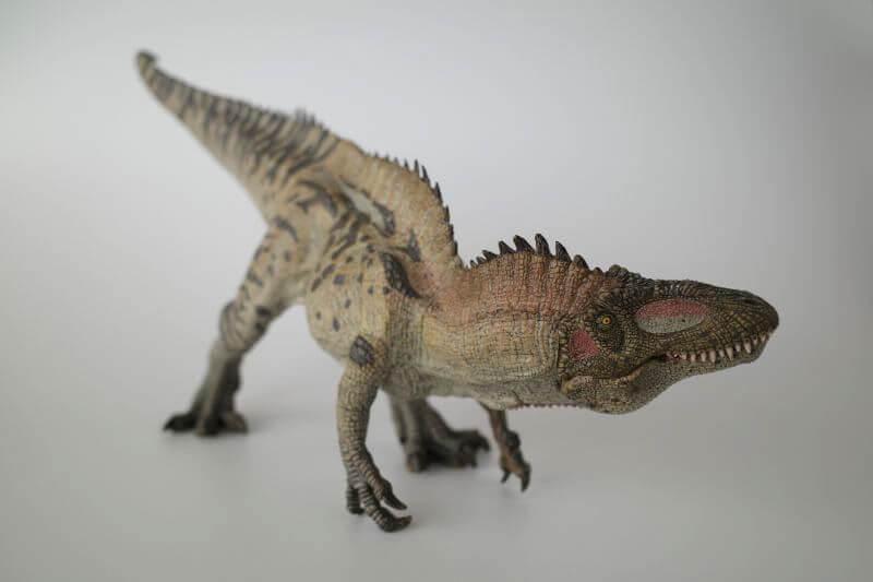 大人の恐竜模型館 Papo アクロカントサウルス 恐竜フィギュア レビュー