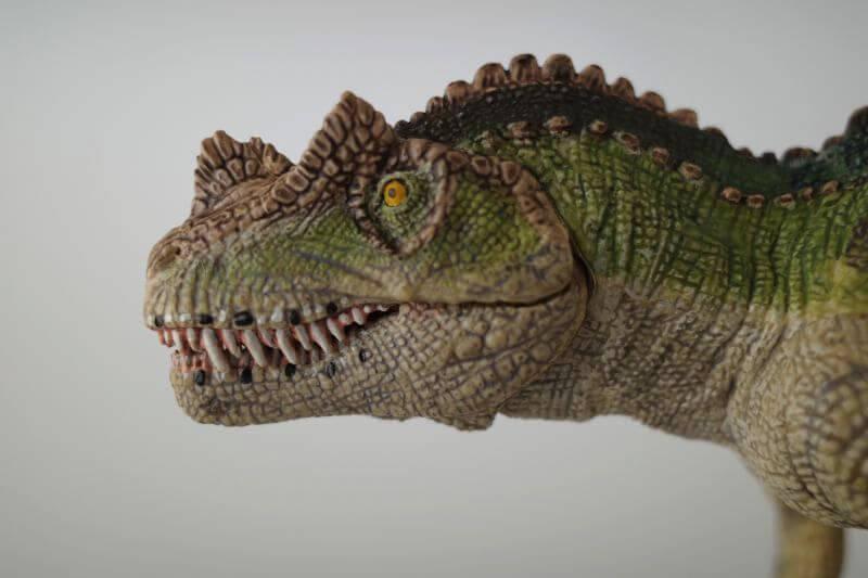大人の恐竜模型館 Papo ケラトサウルス 恐竜フィギュア レビュー