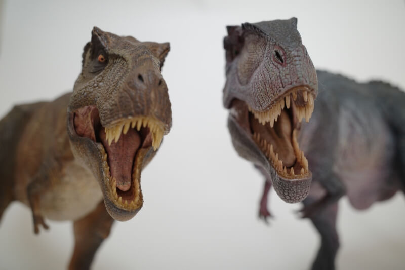 大人の恐竜模型館 Nanmu ギガノトサウルス 恐竜フィギュア レビュー