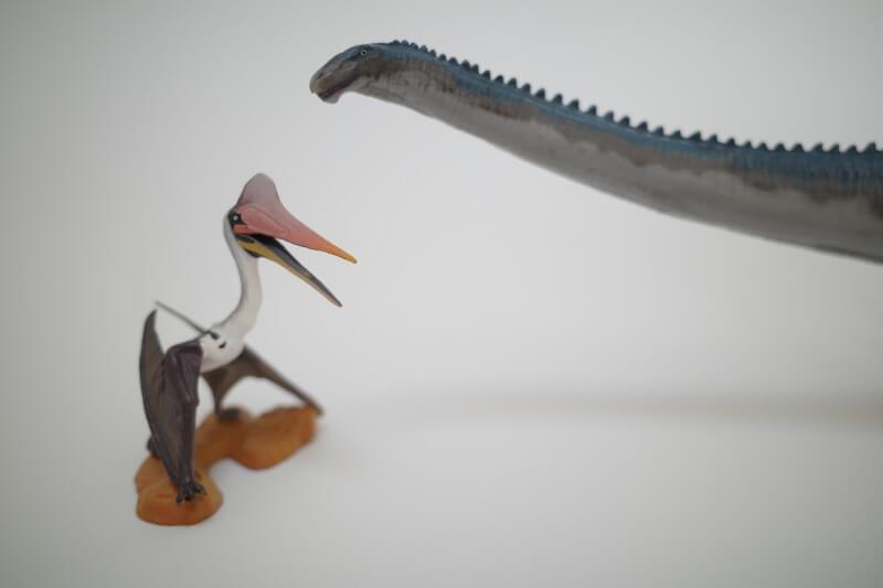 大人の恐竜模型館 Favorite フェバリット ディプロドクス 恐竜フィギュア レビュー